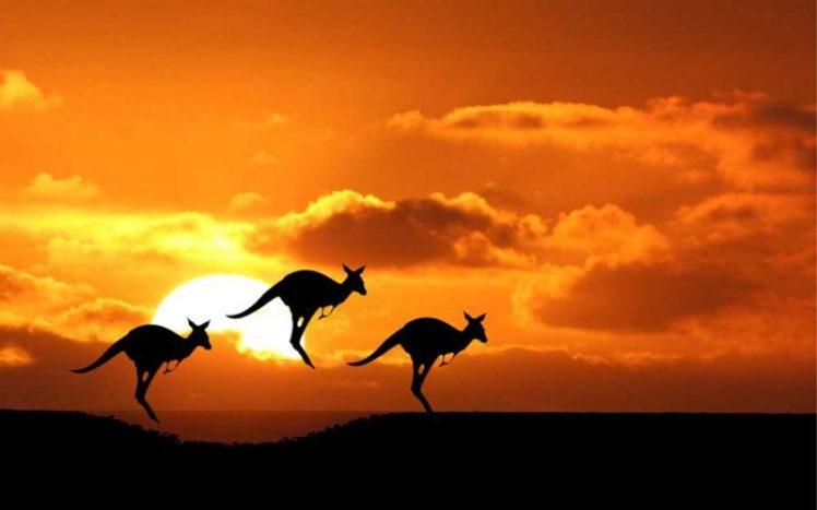 Australia, the fifth continent