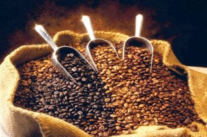 Ethiopian raw coffee. Photo: ©Africardv.com